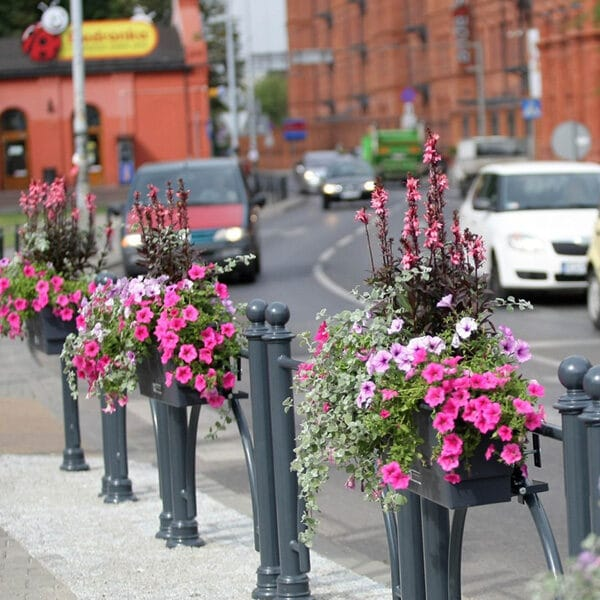 Flowerboxes and Suspensions