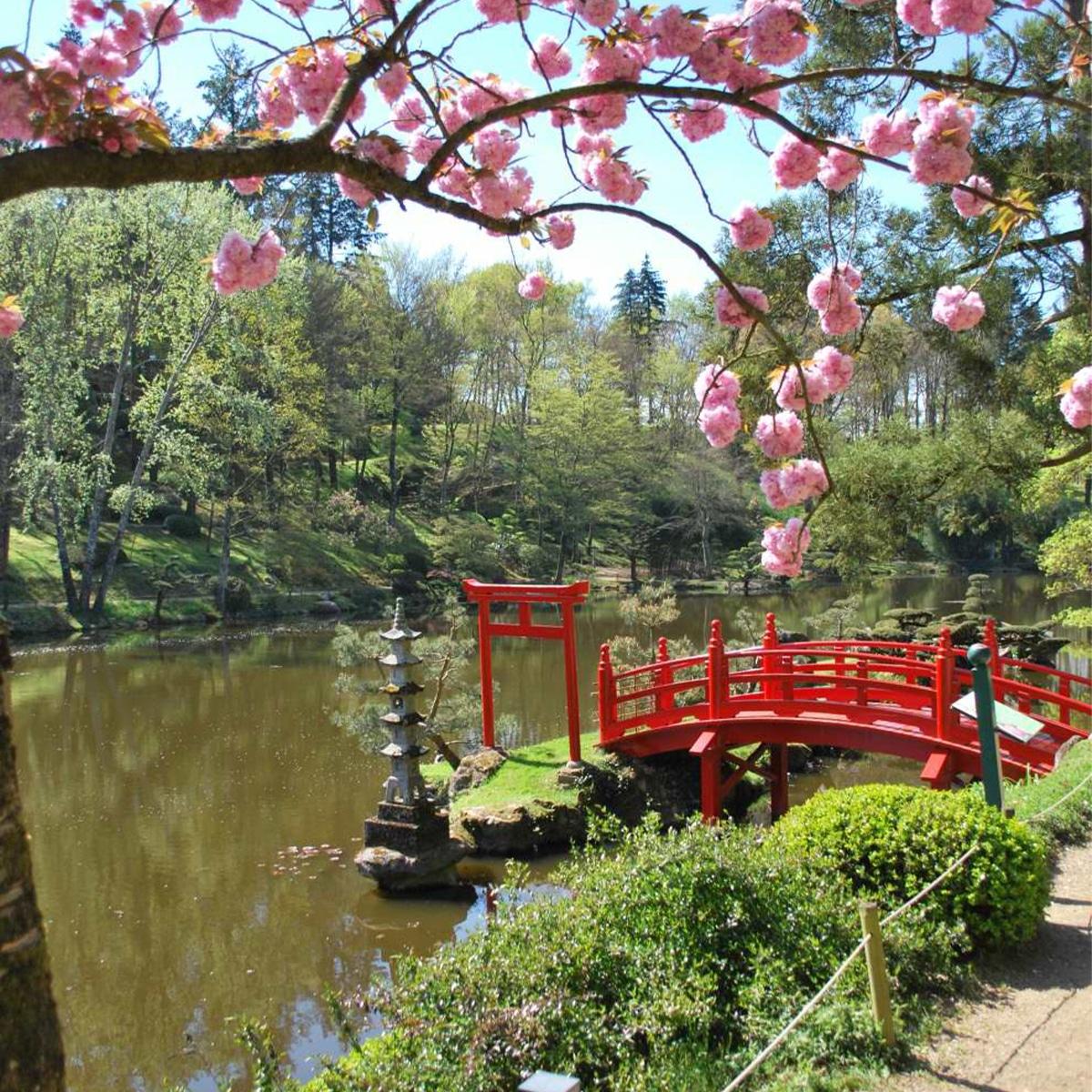 ATECH-japanese-bench